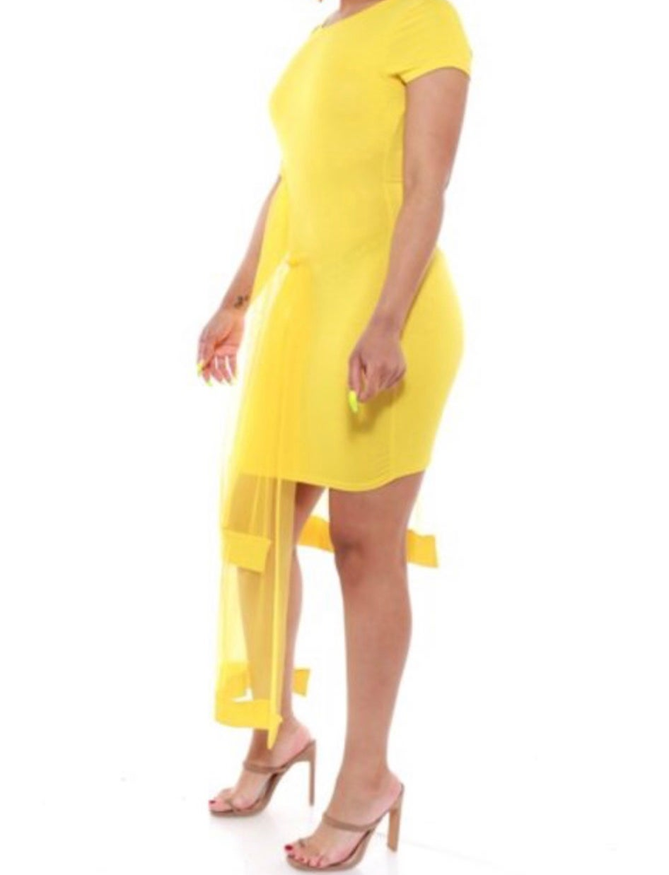 Image of Short sleeve mesh dress