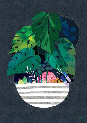 Image of Midnight Monstera - Art Print