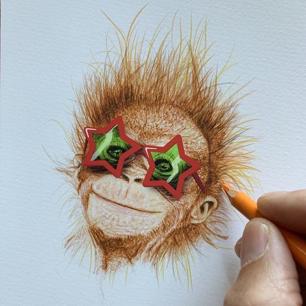 Image of Funky Monkey