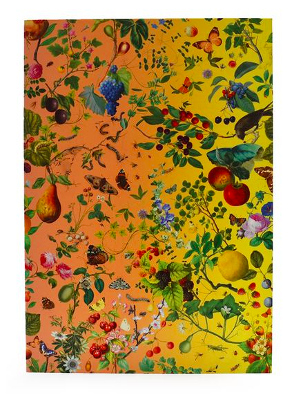 Image of Greeting Card -- Fruits from the Garden and Field