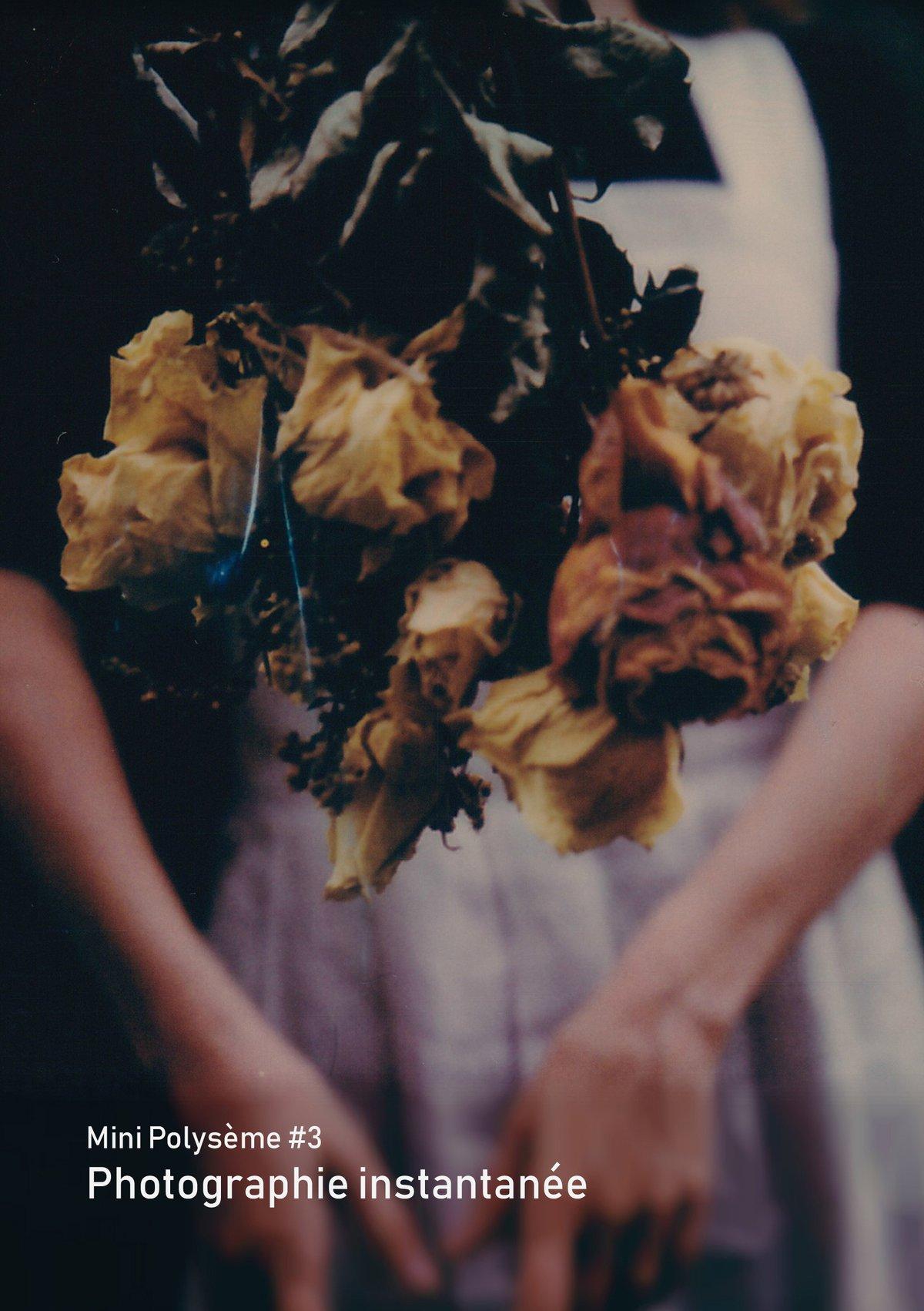 Image of Mini Polysème #3 - Photographie instantanée