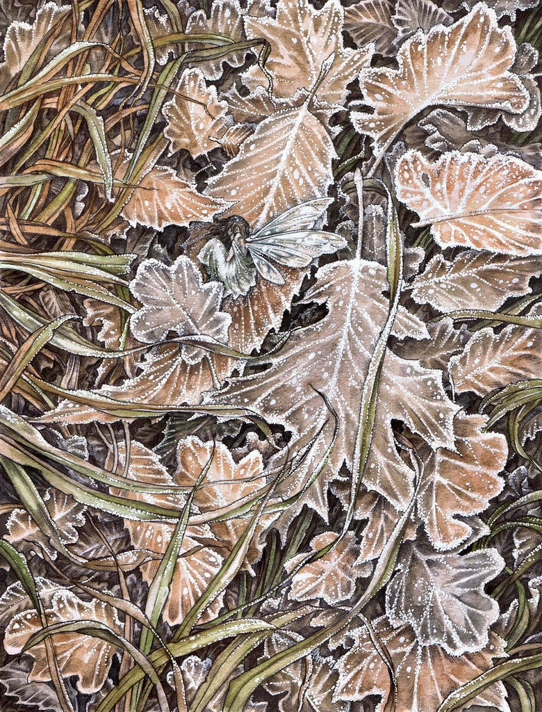 Image of 'The First Frost' by Adam Oehlers