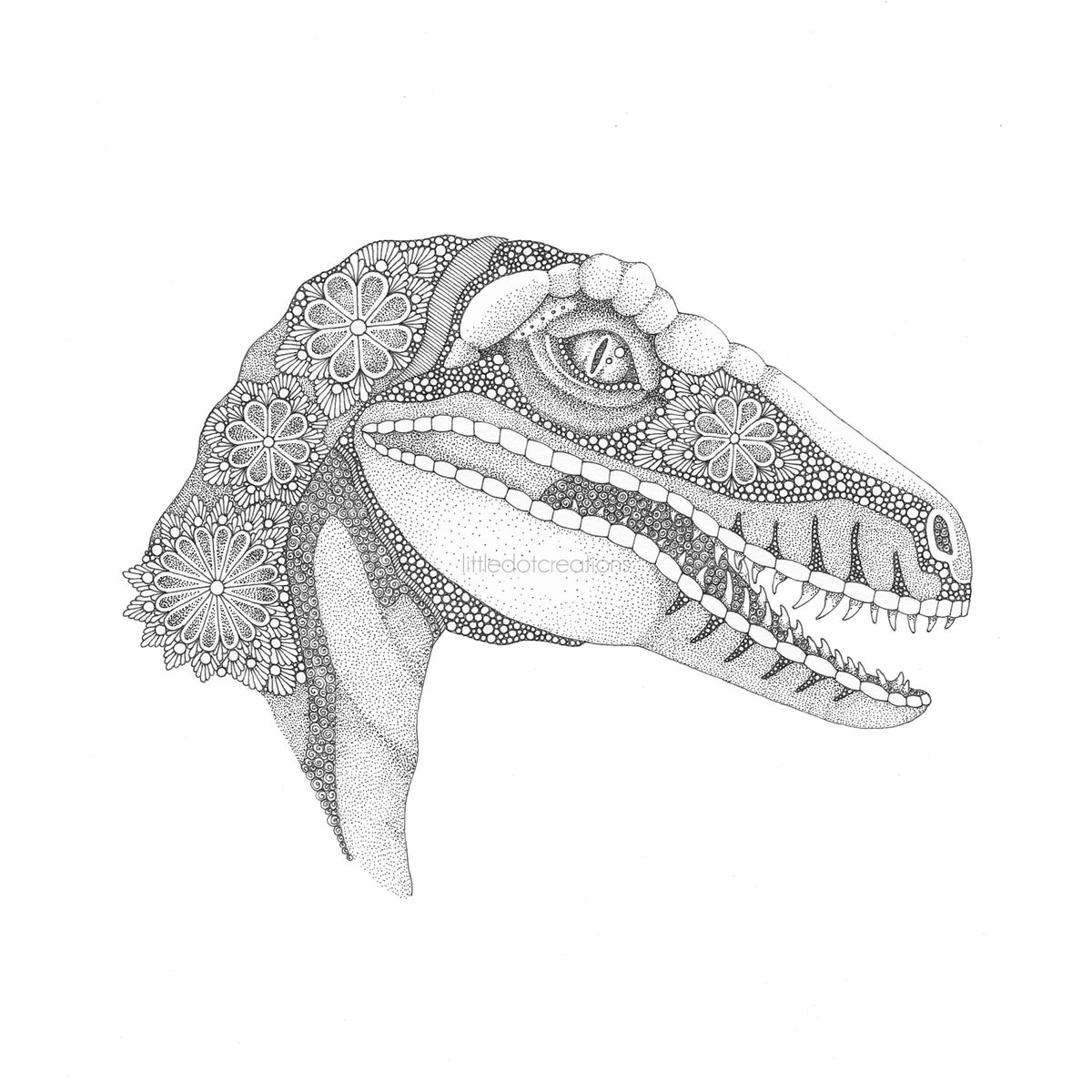 Image of Clever Girl...