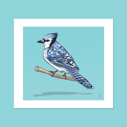 Image of North American Birds (set of three 8x8)