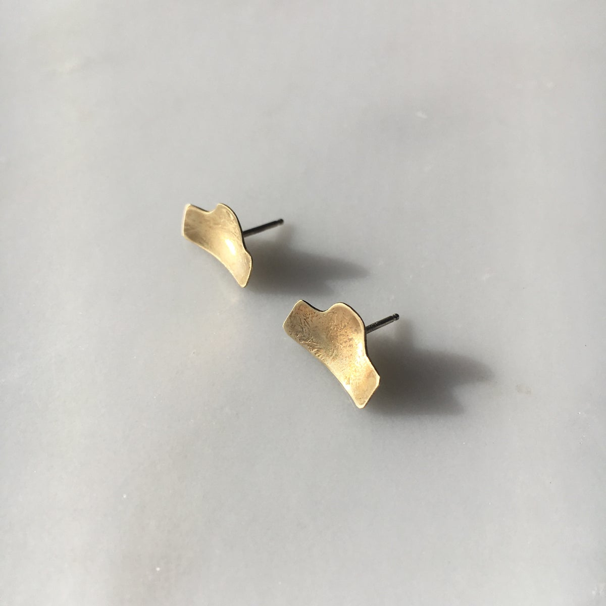 Image of horizon earring