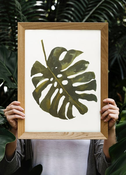 Image of LAMINA MONSTERA