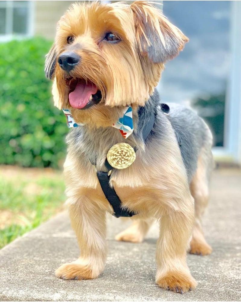 Image of Dog Lapel Pin