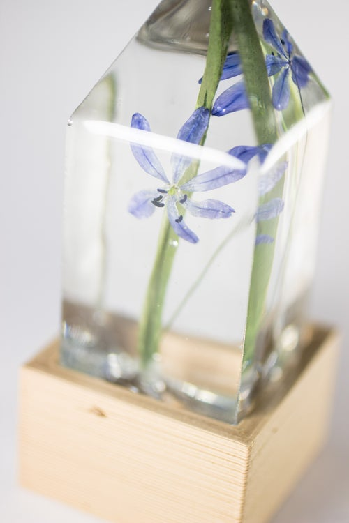 Image of Wood Squill (Scilla siberica) - Floral Desk Light #2
