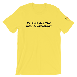 Image of Mass Incarceration T-Shirt