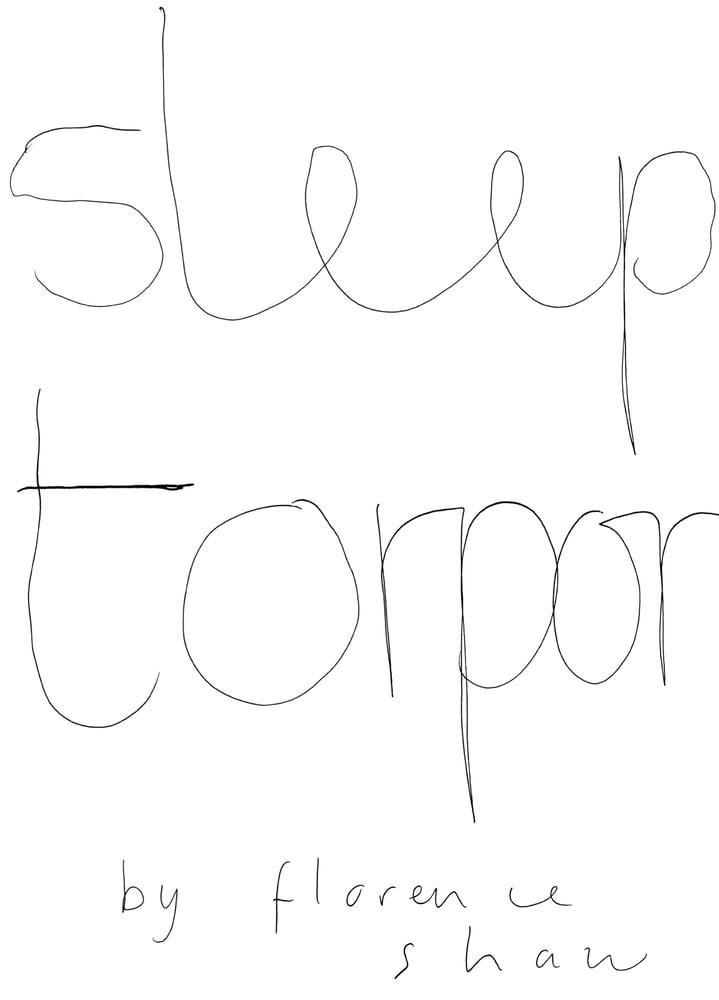 Image of Sleep Torpor