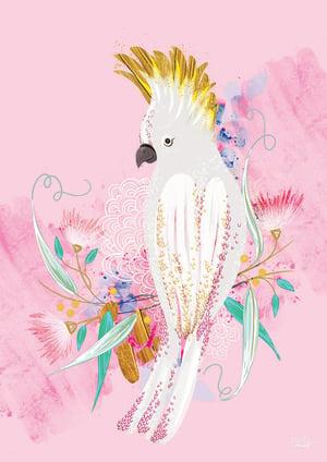 Image of Pink Cockatoo - Art Print