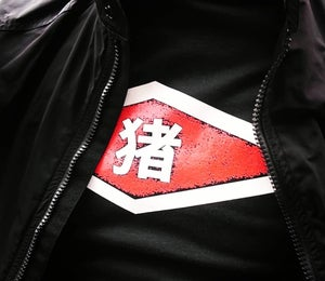 Image of Chinese Logo
