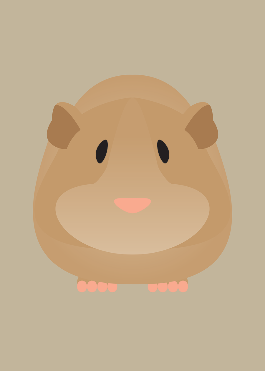 Guinea Pig Collection