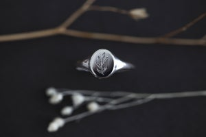 Image of botanical engraved signet ring (metal options available)