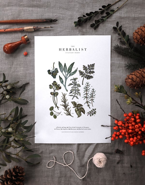 Image of Culinary Herb Print