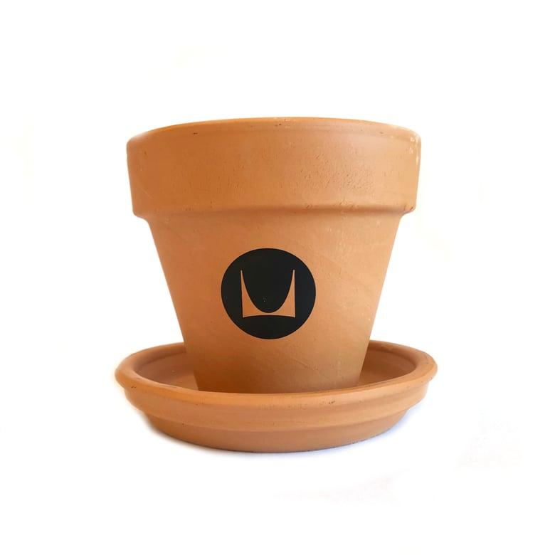 "Image of Herman Miller 4"" Terracotta Pot"