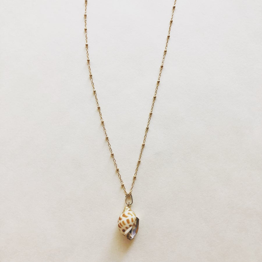 Image of The Dot Shell Necklace