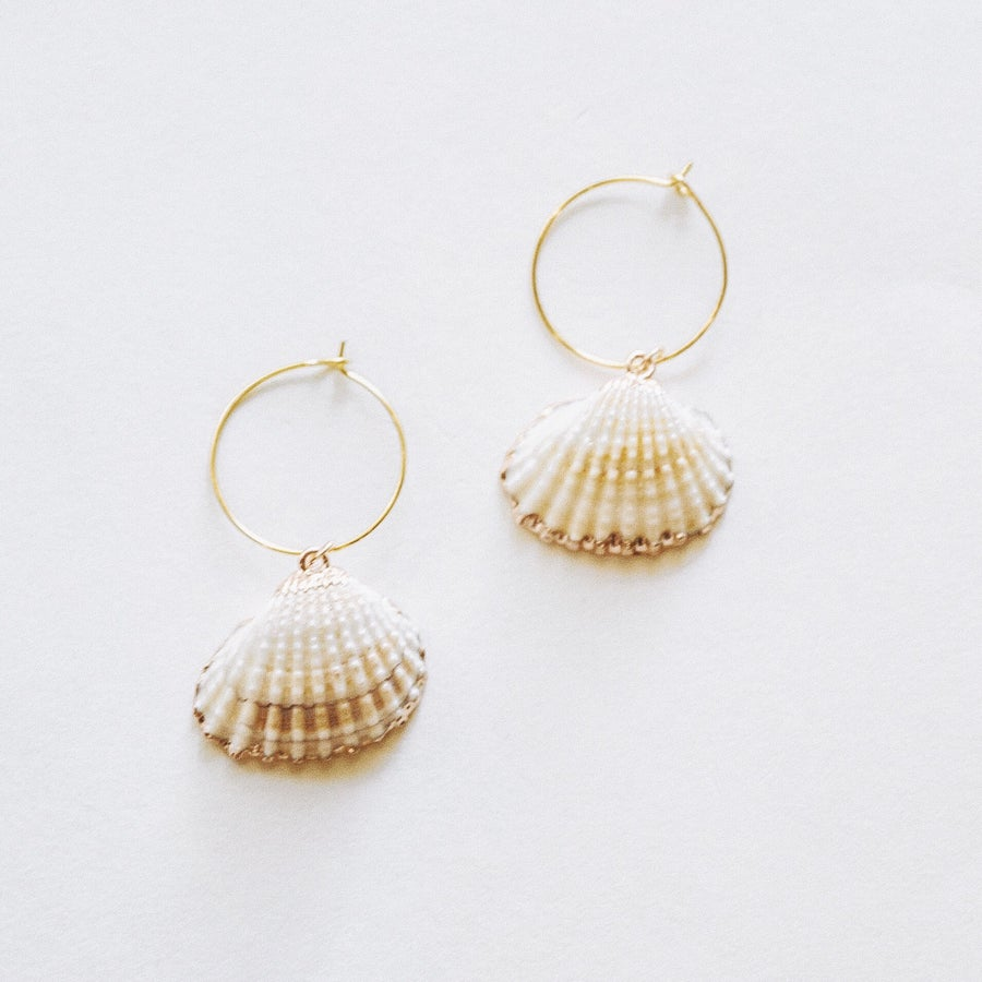Image of Shell Earrings