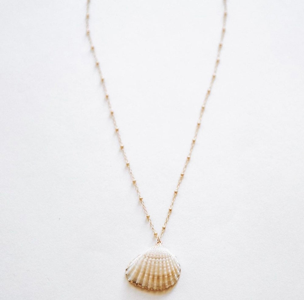 Image of The Shell Necklace