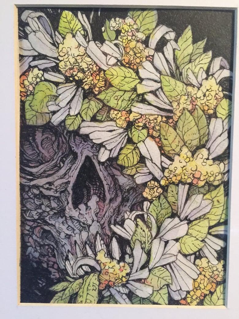 Image of Hydrangea Wreath