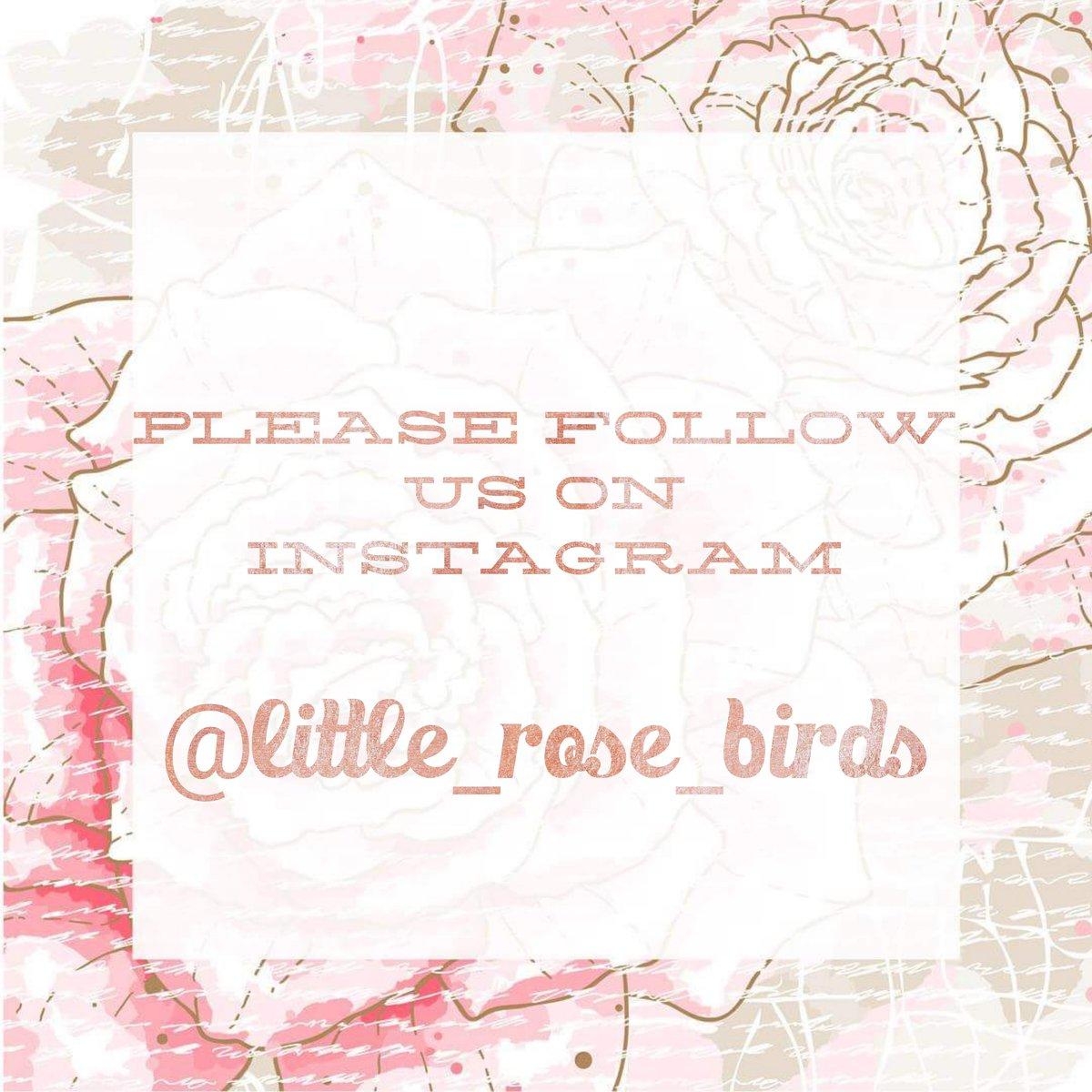 Image of Pink / White 3 Rose Headband