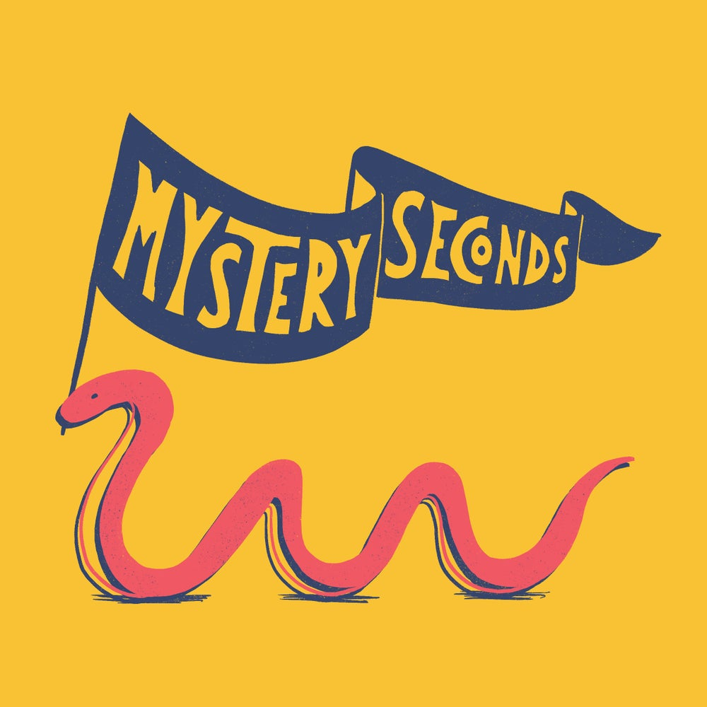 Image of Mystery Seconds Pack!