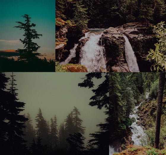 Image of Pacific Northwest Photograph Print Pack by Adam Fields