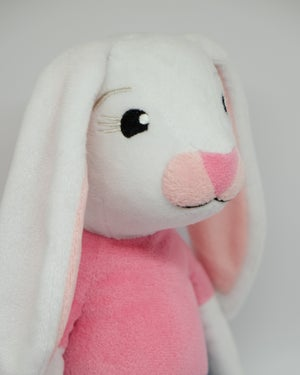 Image of Brave Bunny
