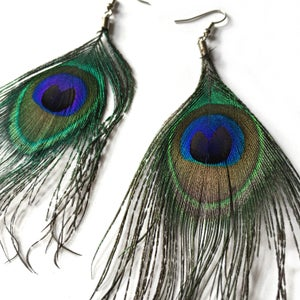 Image of Beautiful Peacock Feather Earrings