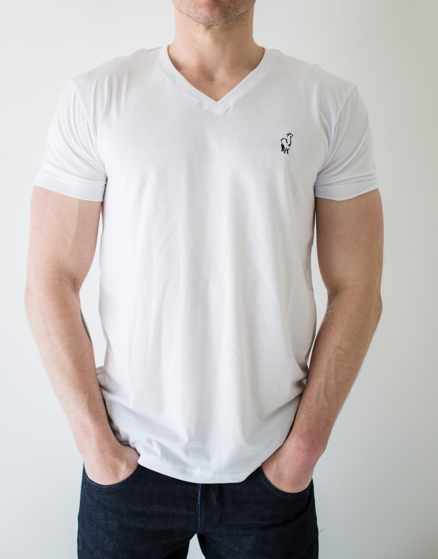 Image of Pima Premium T-Shirt Men's V-Neck