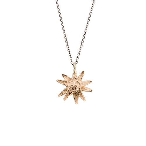 Image of Lauren Wolf Gold Starfish Necklace