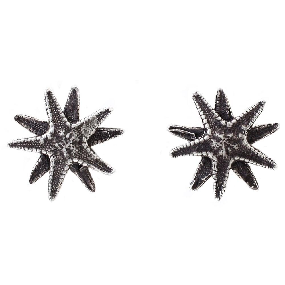 Image of Lauren Wolf Silver Starfish Studs