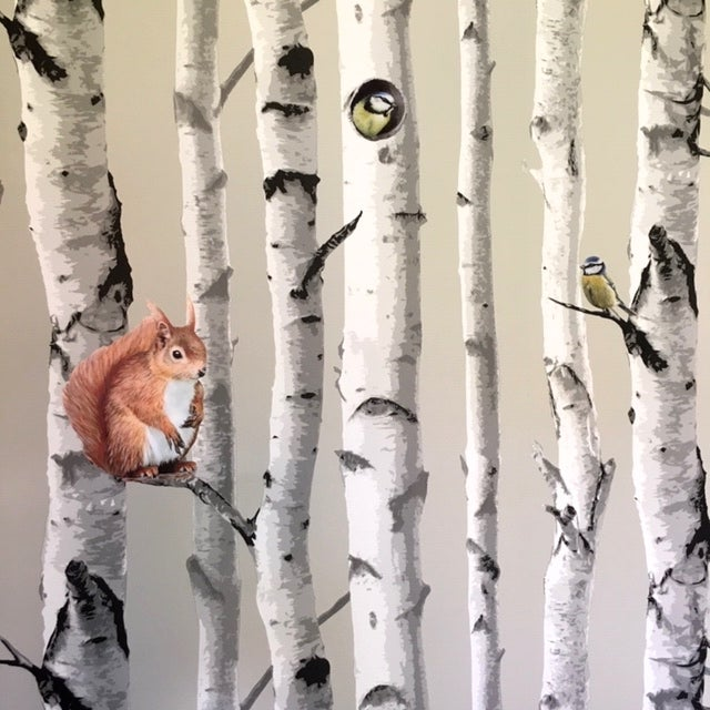 Image of Cyril the red Squirrel ~ Wall sticker decal