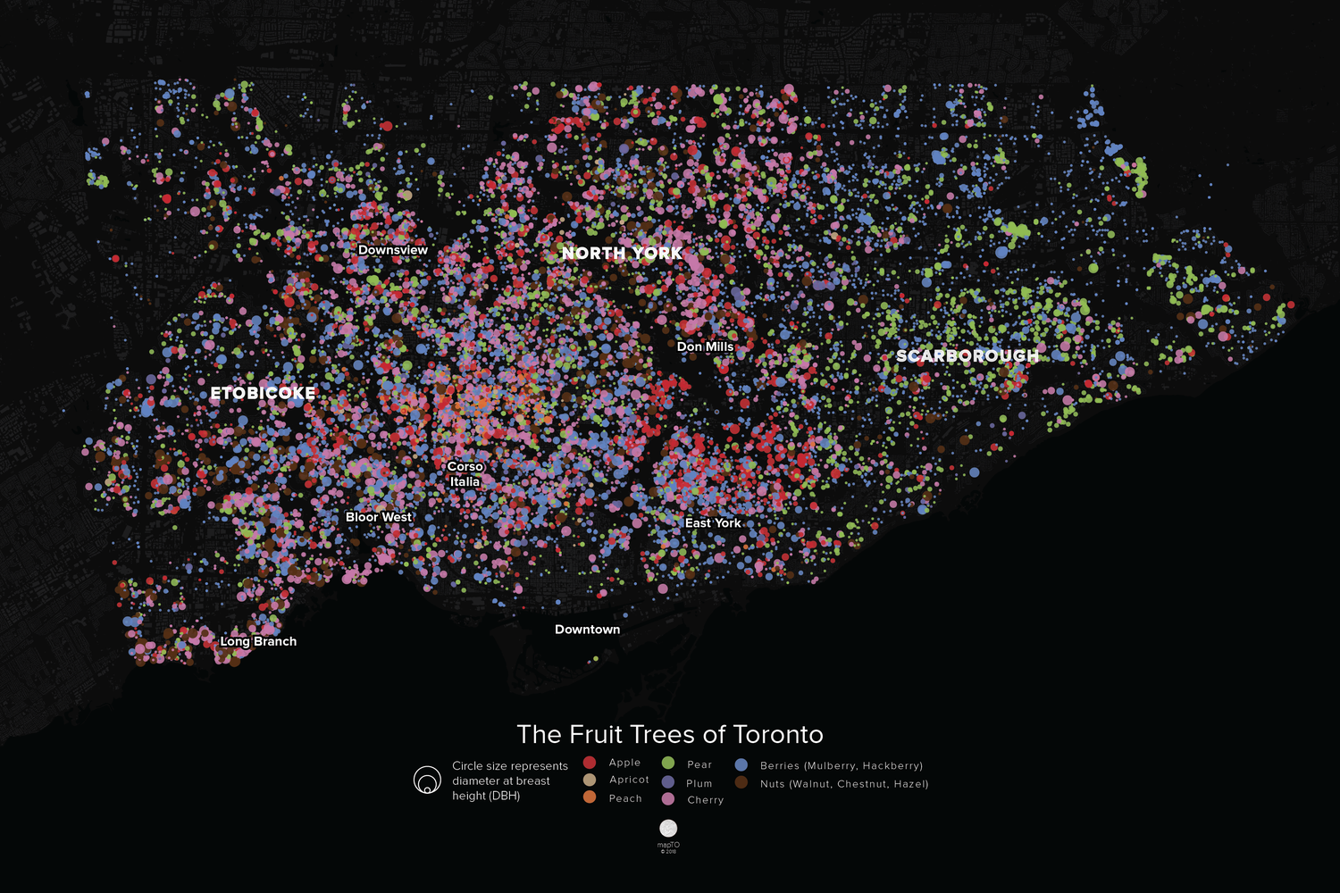 Image of The Fruit Trees of Toronto