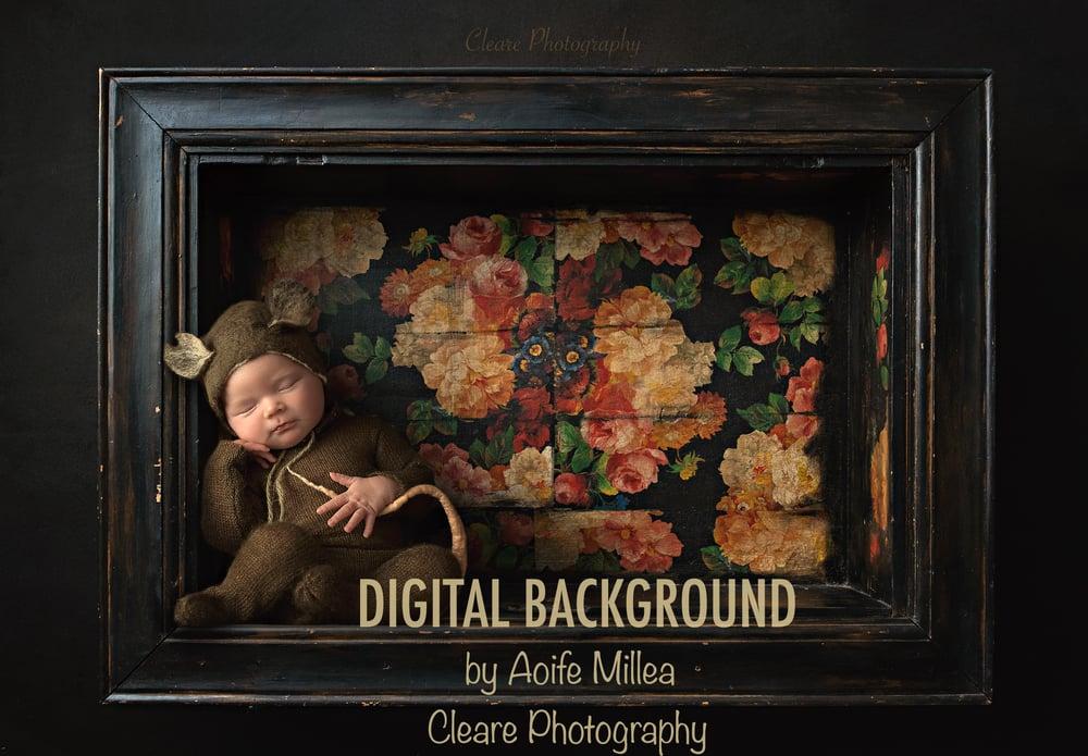 Image of vintage frame shelf newborn digital backdrop