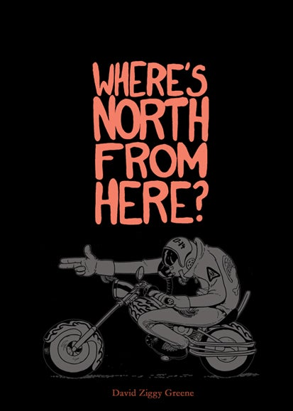Image of Where's North From Here?