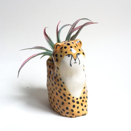 Image of Cheetah Planter