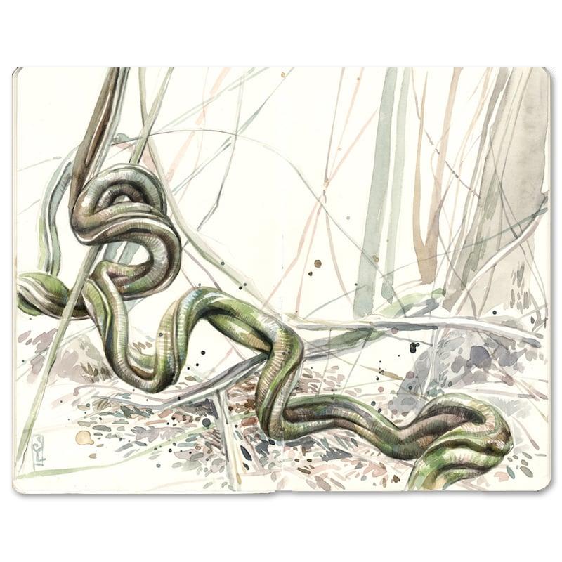 """Image of Original Painting - """"Liane"""" - 20,5x25,5 cm"""