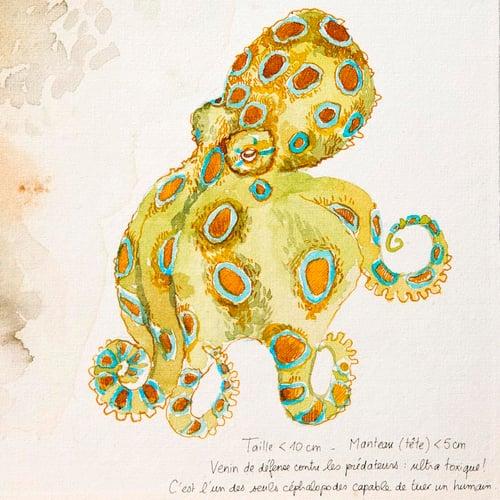 """Image of Original Painting - """"Pieuvre à anneaux bleus"""" - 40x50 cm"""