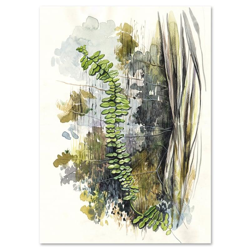 "Image of Original Painting - ""Plante grimpante"" - 20,5x25,5 cm"