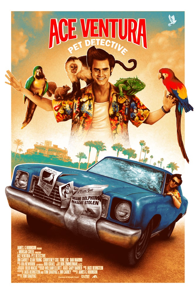 Image of Ace Ventura - Regular Edition