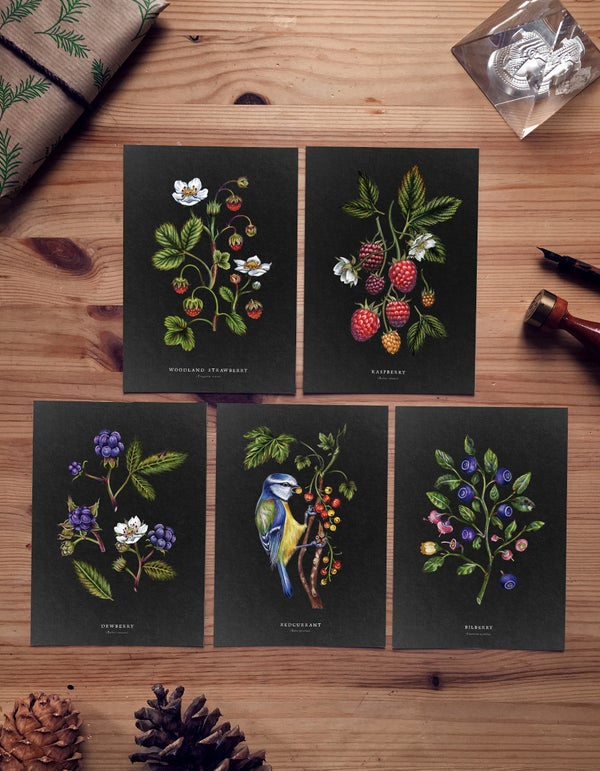 Image of WILD BERRY CARD SET