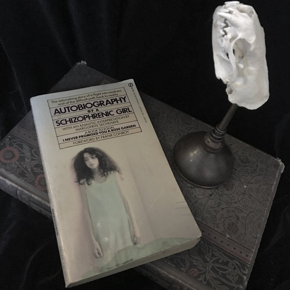Image of Autobiography Of A Schizophrenic Girl