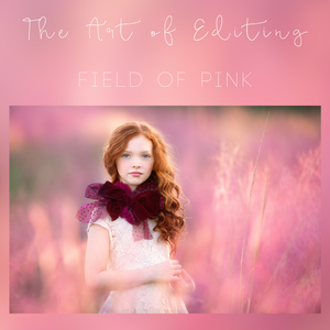 Image of Field of Pink