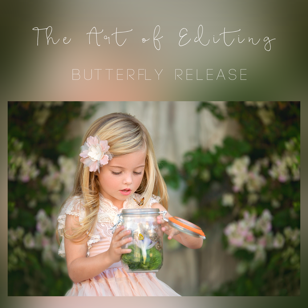 Image of Butterfly Release