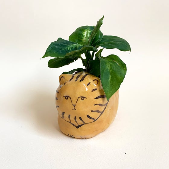 Image of Lion Planter