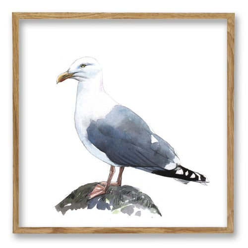 """Image of Original Painting - """"Goéland argenté"""" - 20x20 cm"""