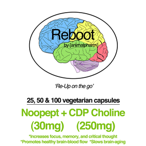 Image of NOOPEPT(30MG) + CDP CHOLINE(250MG)