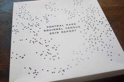 Image of Central Park Squirrel Census 2019 Report