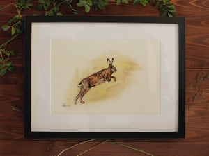 Image of Original Works on Paper Series - Hare - A4/Framed